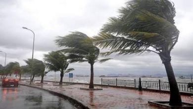 Photo of أمطار ورياح مثيرة للرمال والأتربة غدا…والصغرى بالعاصمة 11 درجة