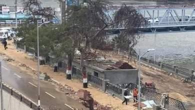 Photo of عاجل  بسبب الرياح سقوط شجرة كبيرة بكورنيش بنها