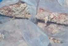 Photo of ضبط 325 كجم من الدهون الحيوانية الفاسدة قبل ترويجها بأوسيم