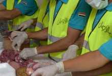 Photo of ذبح 10 عجول أضاحي وتوزيعها على الفئات الأولى بالرعاية خلال أيام عيد الأضحى المباركبالقليوبية