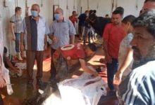 Photo of مجازر القليوبية تستقبل 108أضحية خلال ثالث ايام العيد