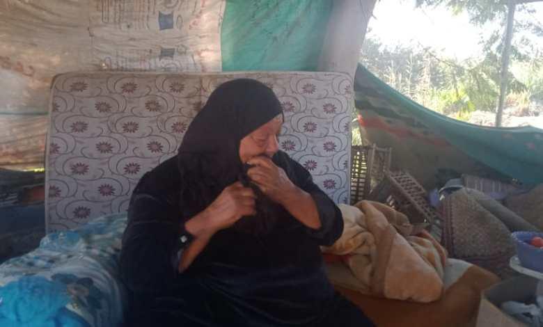 Photo of بالفيديو.. مأساة سيدة عمرها ٧٠ عاما تنام في الشارع وسط الكلاب .. وتستغيث بالرئيس
