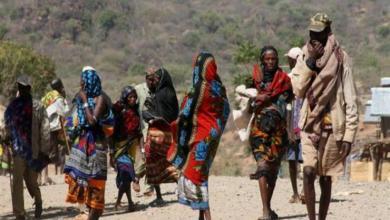 الأمم المتحدة تعلن عن عبور 11 ألف لأجئ من إثيوبيا إلى السودان