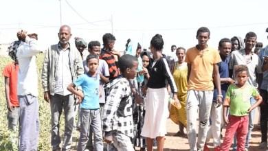 السودان..طائرات خاصة لنقل اللاجئين الاثيوبيين
