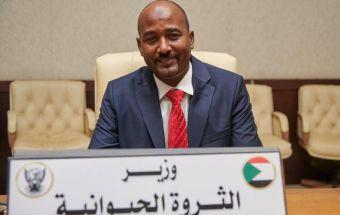 وزير الثروة الحيوانية يفصح لـ(نبض السودان) عن آخر مستجدات إنسياب الصادر للسعودية