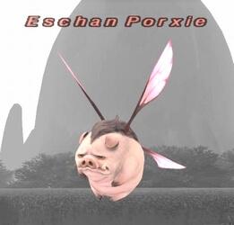 Porxie