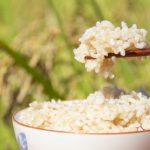 玄米と白米の違いとは?