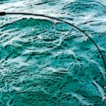 【鳥羽ブリなぜだ!】太漁丸ツアーの報告