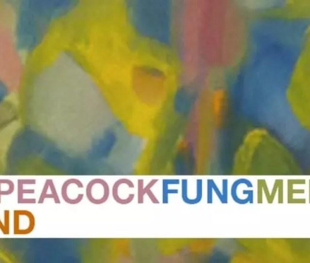 The Regan Peacock Fung Memorial Art Fund