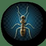 bug04