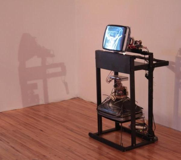 Naccarato, Untitled aka Leonard (Hybrid Sculptural Object), Axeneo7, Gatineau, QC, 2010