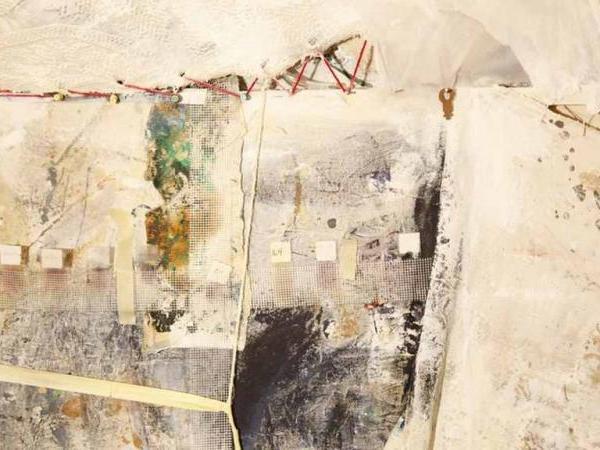 Image 06: John Naccarato, Vertebra, Part 2: The Skinning of Memory (VP2) (Memories), Detaill. Artist Studio, University of Ottawa, Ottawa, Canada