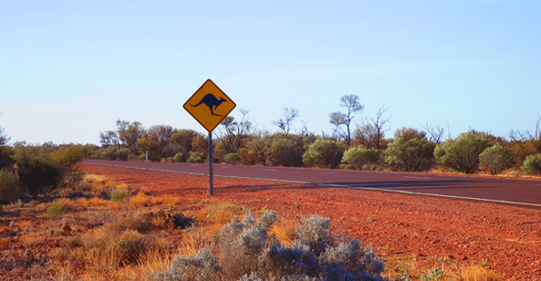 outback road with kangaroo warning road sign