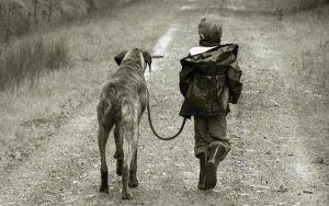 bebe-pasea-con-perro