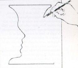 dibujo-cerebro-derecho