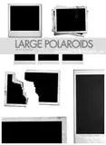 Large_polaroid_brushes_by_Sanami276.jpg