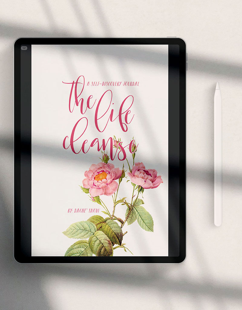 The Life Cleanse Journal (Digital Edition)