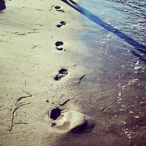 Spuren im Sand - jn
