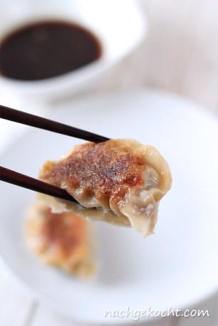 Gyoza - Teigtaschen gefüllt mit Schweinefleisch und Bärlauch