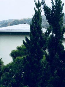 春分の日 逗子 雪景色