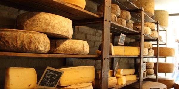 飲食店で出すべきウォッシュチーズの種類とは?