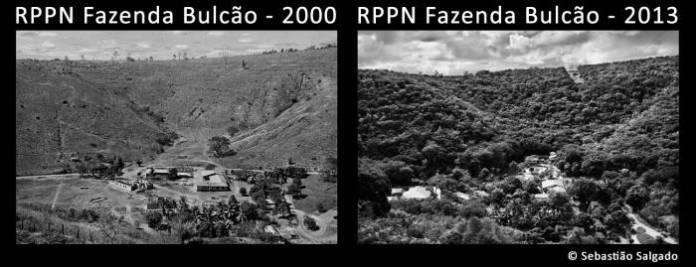 СВАKА ЧАСТ! Спектакуларне фотографије пре и после: Бразилски брачни пар од пустаре направио рај посадивши 2 милиона стабала (ФОТО) (ВИДЕО) 6
