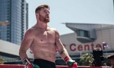 'Canelo' tiene OK para pelear en diciembre