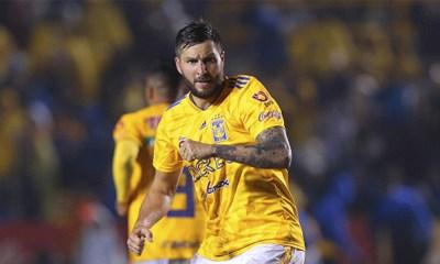 club histórico de Sudamérica intentó fichar a Gignac, Boca Juniors intentó fichar a Gignac, Boca Juniors