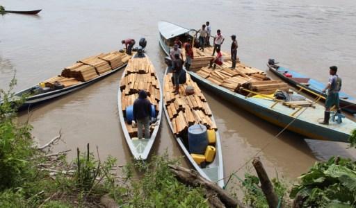 Wampís del Santiago confiscan madera extraída ilegalmente y esperan presencia de autoridades para evitar enfrentamientos