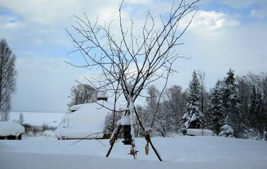snöskottardag 550