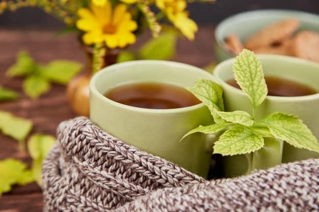 chás para infecção urinária
