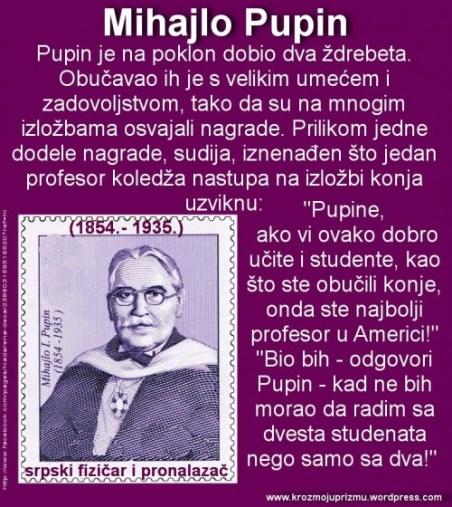 stamp PUPIN