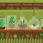 Gajenje biljaka u terarijumu