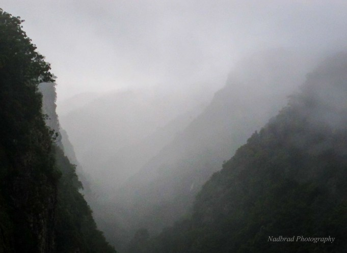 Ellenborough Falls Valley, Australia