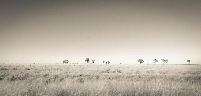 Outback Australia (1 of 2)