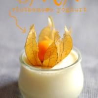 Da ua - Dreamlike vietnamese yoghurt