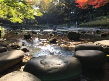 Stepping Stones and Togestu kyo