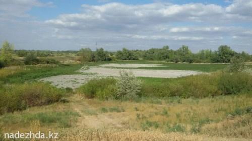 Вид одного из прудов в Зачаганске с водой и без воды