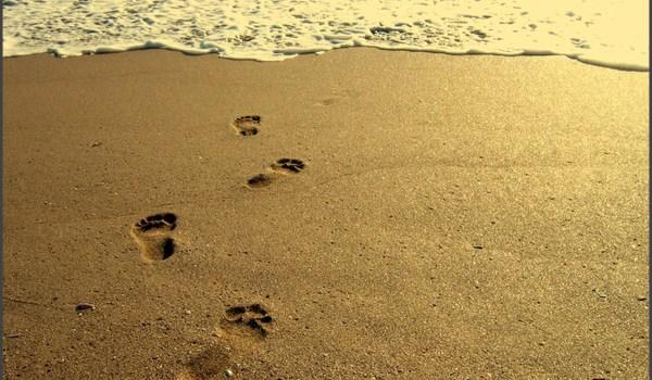 Pasi pe nisip…