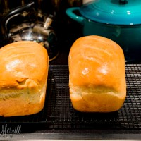 A Photo a Week Challenge: Fresh Baked
