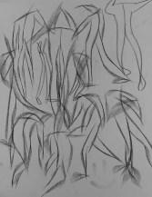 IMAG0423 (1)