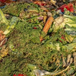 voedselverspilling