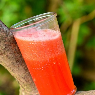 Sapje van watermeloen