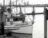 #012 Pacific Searcher