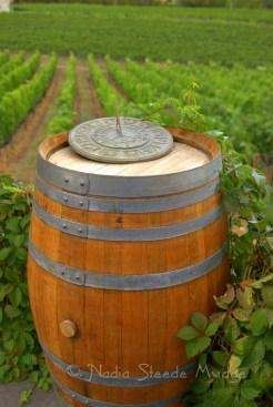 #213 Vineyard barrel DSC_9655