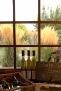 #221 Lake Breeze winery DSC_9828