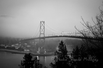 #347 Lions Gate into the fog _NAD0627