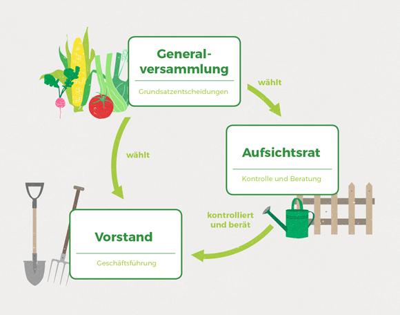 wirgarten_illustration_genossenschaft_580px
