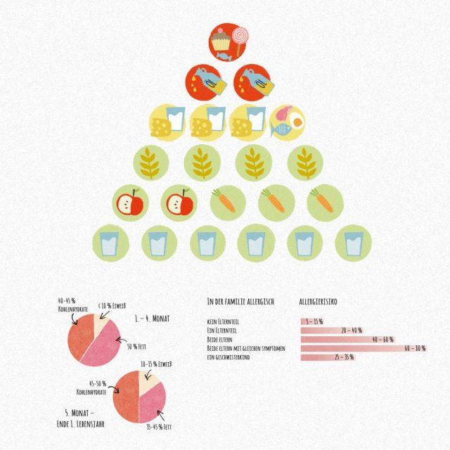 Babyernährung Ernährungspyramide