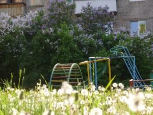 Vermisst wird: Der Frühling
